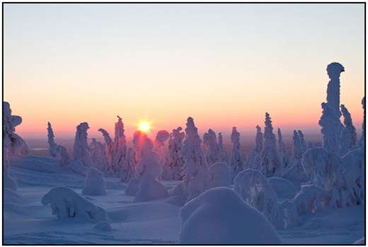 2011-02-13 - Zonsondergang achter prachtig besneeuwde bomen<br/>Iso Syöte - Finland<br/>Canon EOS 7D - 40 mm - f/16.0, 0.05 sec, ISO 400